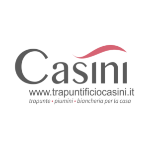 casini-1