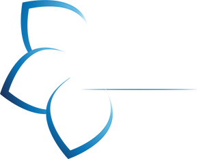 Orchestra SIO